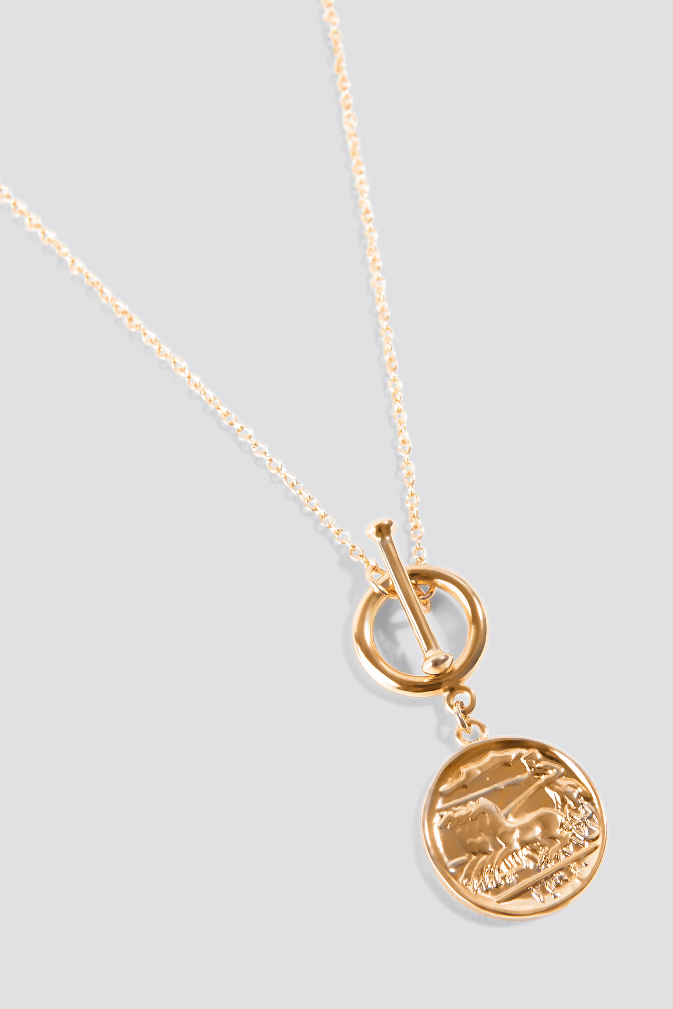 Front Hoop Coin Necklace  NA-KD.COM