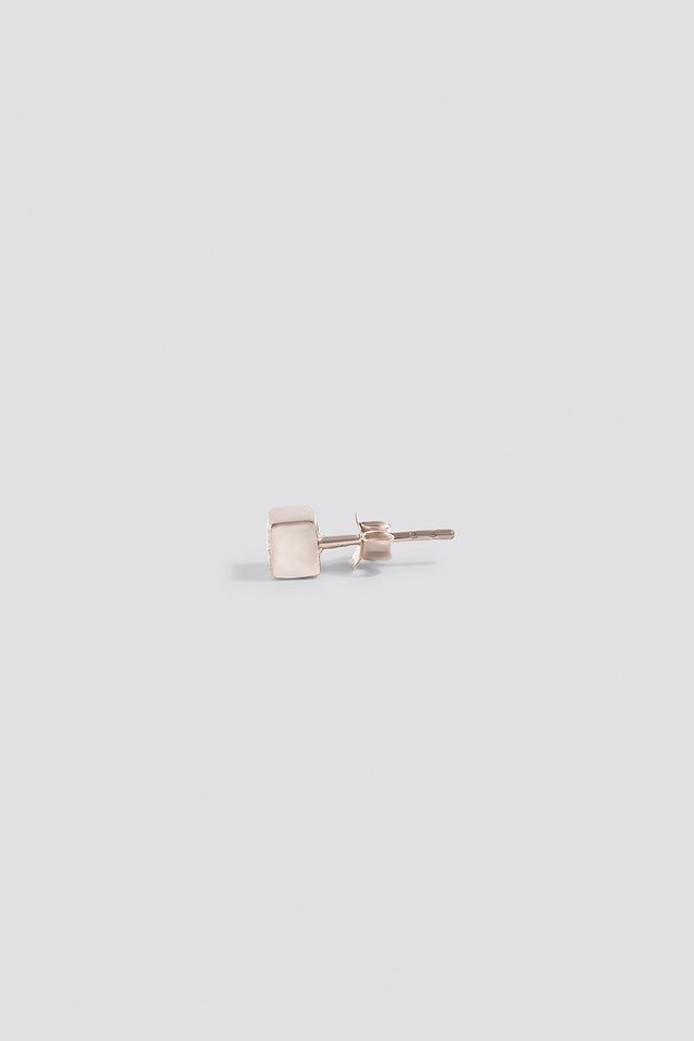 Charmed Stud Earring Silver Plated Brass