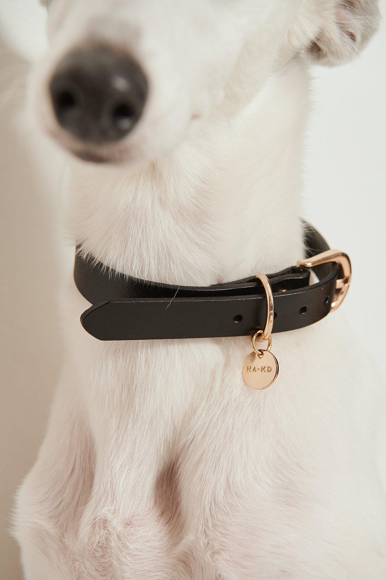 NA-KD Accessories Basic Leather Dog Collar - Black