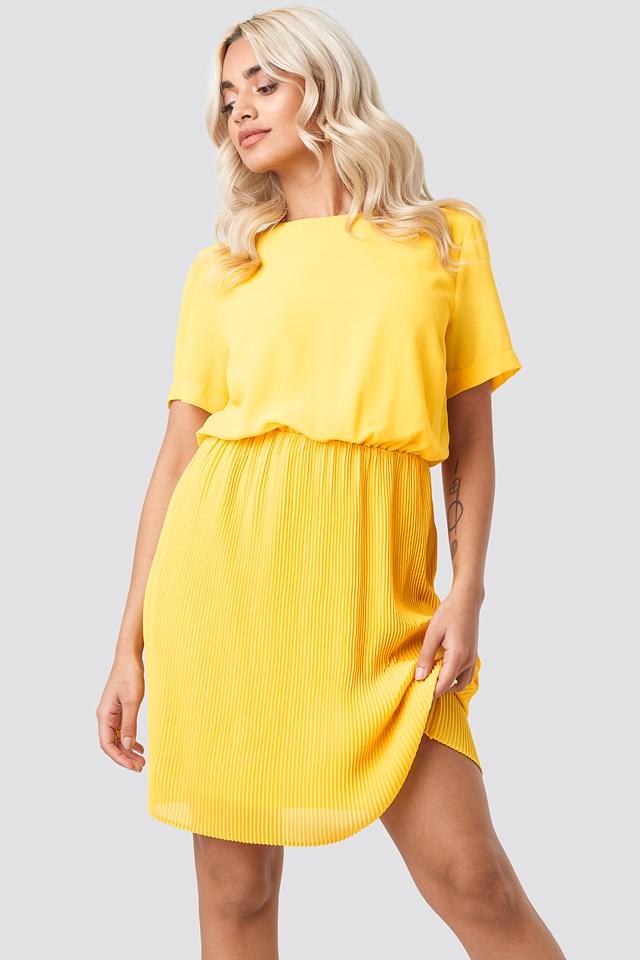 Pleated Skirt Part Dress Citrus