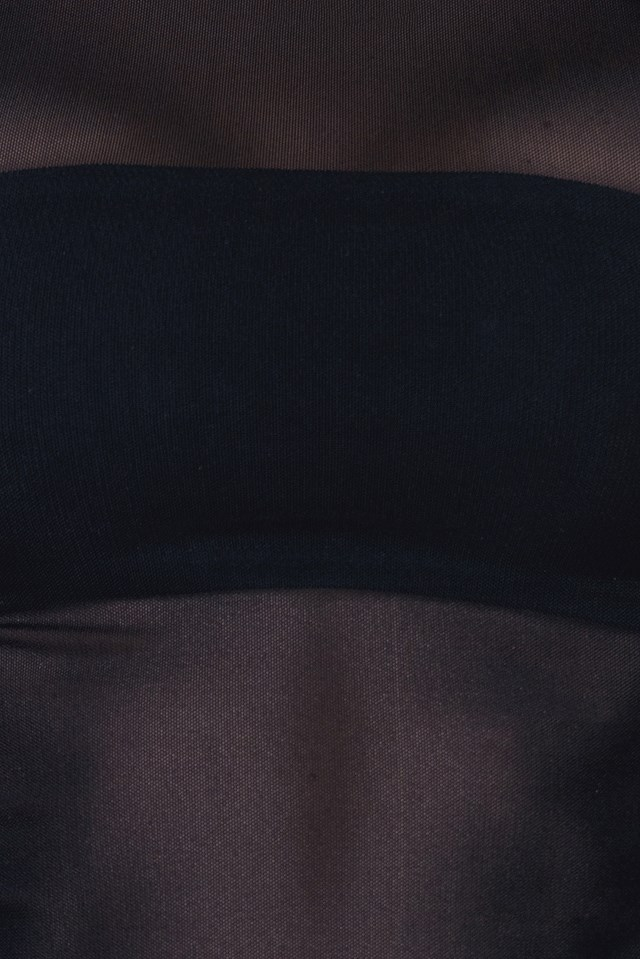 Mesh Cut Out Neckline LS Cropped Top Black