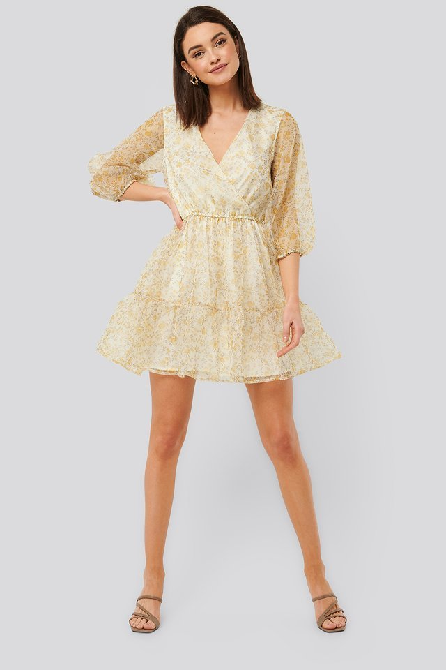Flower Printed Organza Mini Dress