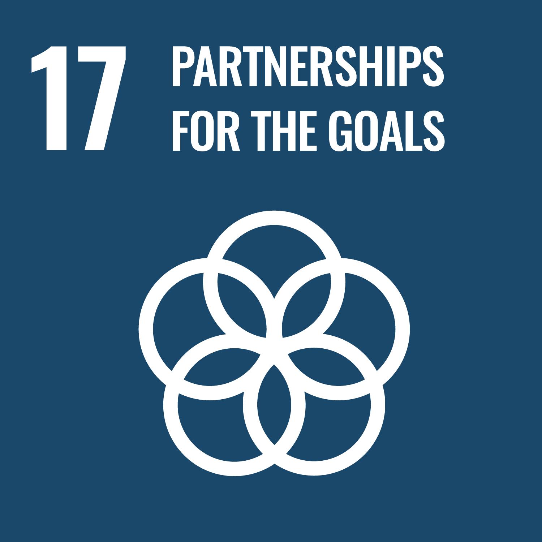 SDG 17 – Partnerships for the goals